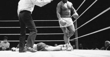 Tyson Knockout Punch